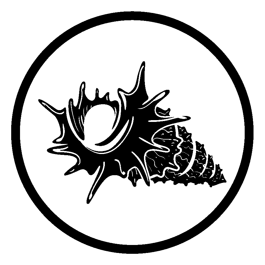 Mollusk Collection Logo